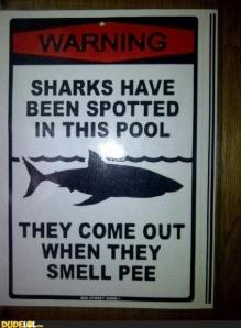 pee shark