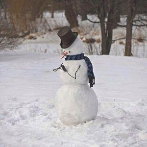 phone snowman