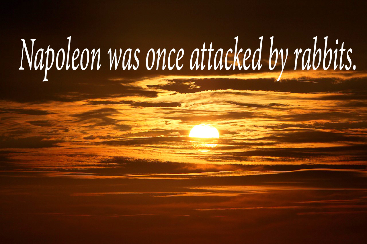 odd historical facts make funny inspirational posters
