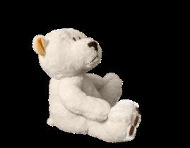 teddy-1313634_1280